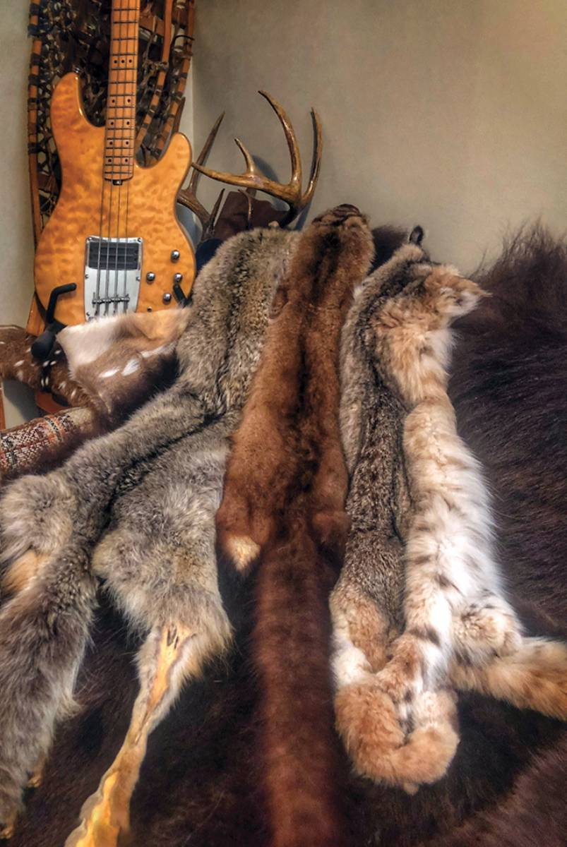 Tanned furs make great office or man cave decor and conversation pieces. There is also a niche market for these goods at trapper conventions, black-powder rendezvous, flea markets and craft shows.