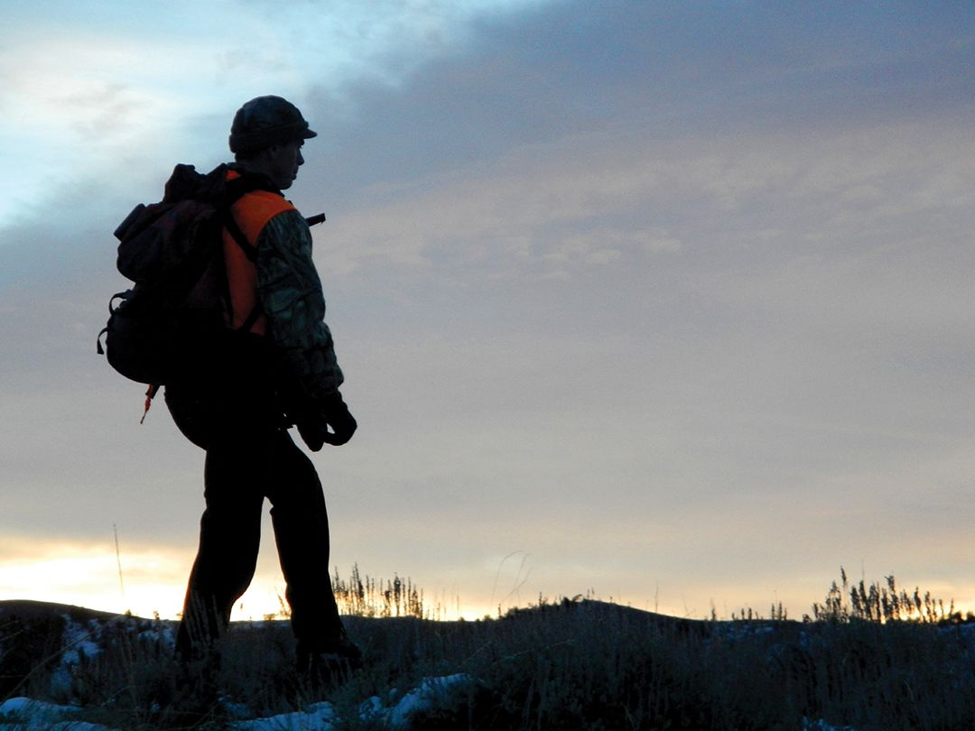 In places that offer visitation for purposes other than hunting on public land, an early morning hunt is usually the best.