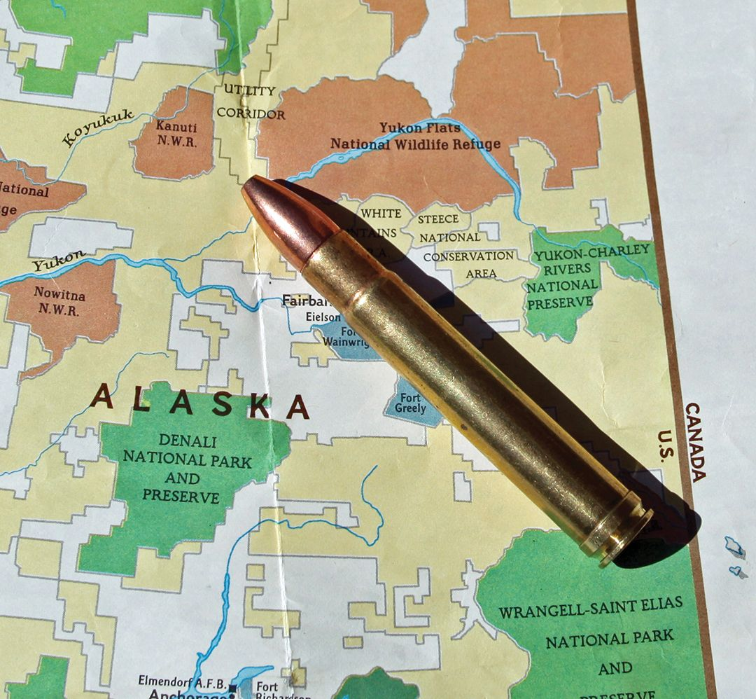A .416 Remington Magnum loaded with 400-grain bullets is a good option for coastal brown bears.