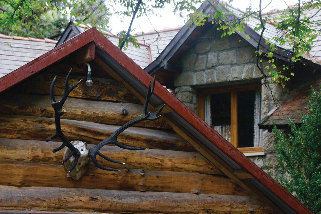 This skull, mounted in the peak of this roof many years ago, happens to be in Argentina, but it could just as easily be in Austria, Montana, Romania or New Zealand. The practice of mounting antlers for posterity is universal.
