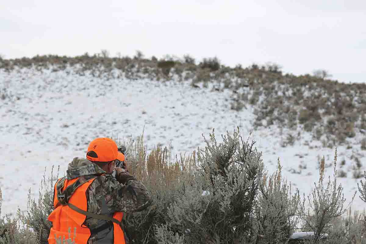 Rolling terrain provided ideal conditions for getting close to deer for a better look.
