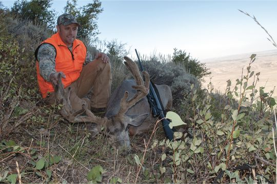 This nontypical Utah buck was bedded in a picturesque, high-country aspen grove, but it reeked of sage.