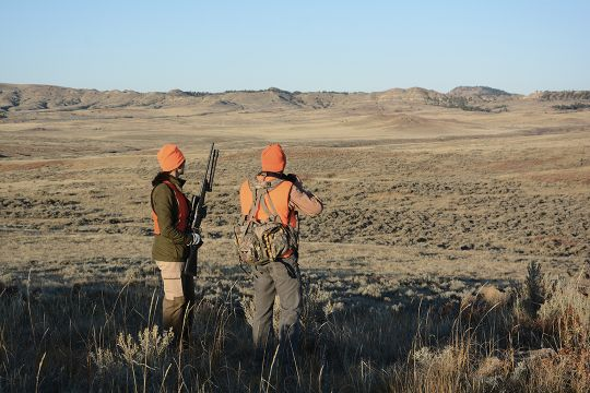 Early sunshine warmed the backs of the hunters and eased the task of spotting pronghorn.