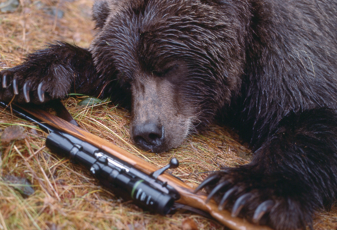 In 1988 Terry's Alaskan brown bear was taken on Montague Island. The rifle was a Weatherby Mark V .300 Weatherby Magnum. The bear was coming in fast, though not charging, and died 17 yards from the rifle.