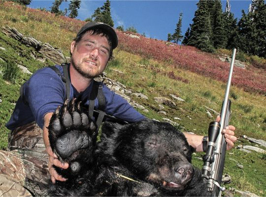 Andy Byrd shot this old boar that he found feeding on alpine blueberry bushes.