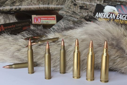 Here's where East meets West – the .223 Remington (left) is a favorite of hunters east of the Big Muddy, and western hunters prefer the extra muscle provided by cartridges such as the .22-250 Remington (right).