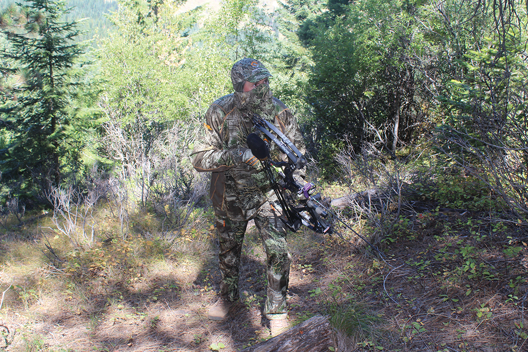Stalking elk is an art form that requires combining stealth with speed, and it often requires taking calculated risks. If not proceeding aggressively, a hunter will seldom succeed.