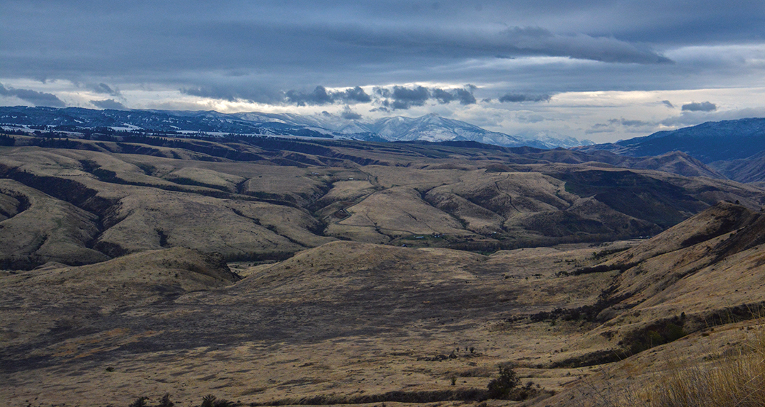 White Bird Grade in central Idaho is where the Salmon River turns south into Hells Canyon and the home of the Nez Perce. Whitetails are found all along the river bottoms and coulees.