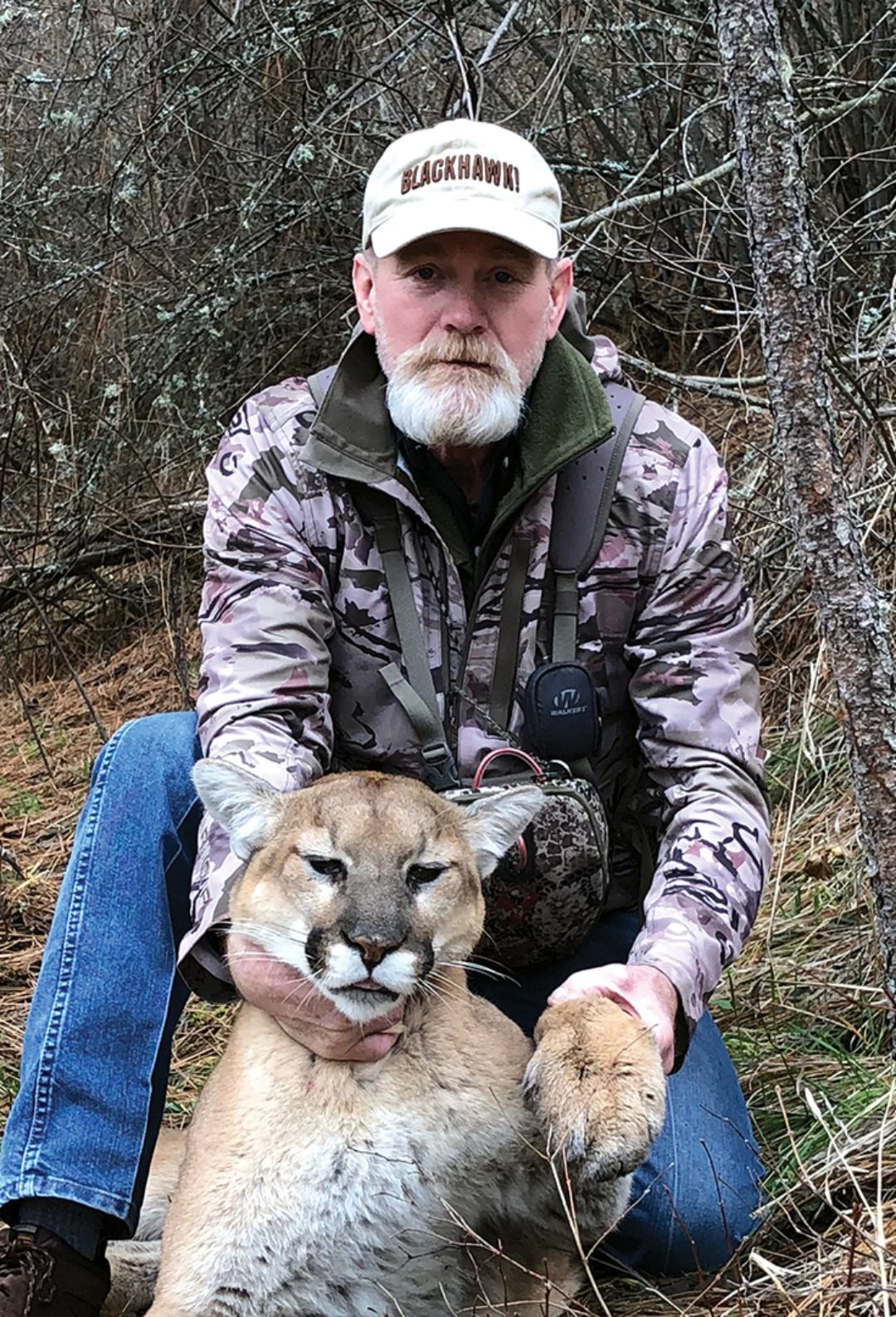 This is one of the many mountain lions Mike has called in during the past decade.