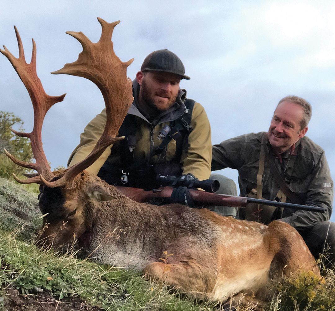 Sam Pyke borrowed Gary's rifle and shot this great fallow stag at last light.