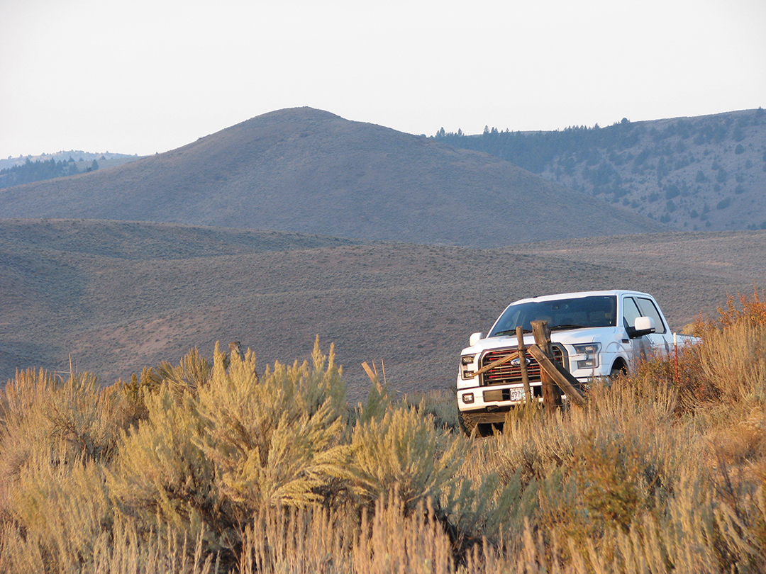 Wide-open vistas are deceptive as mule deer can hide in the folds or bed in tall sage.
