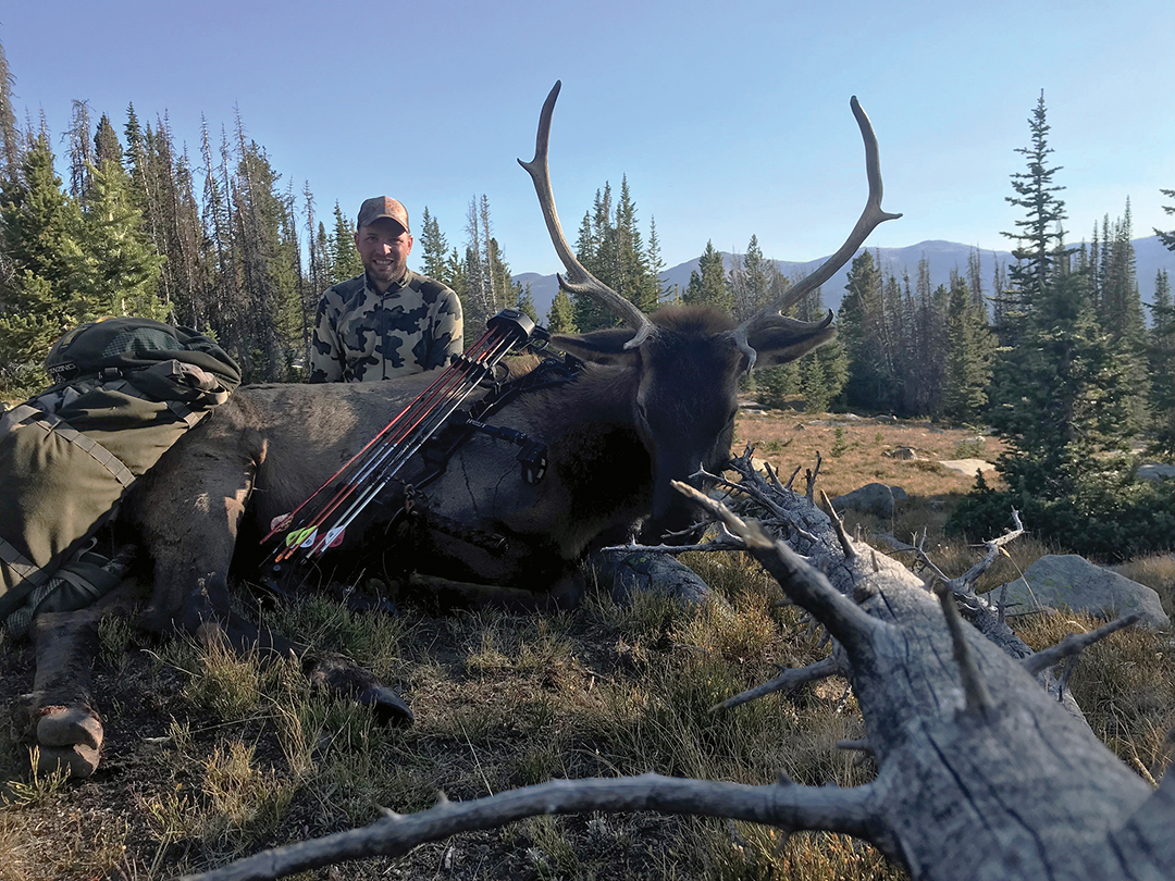 With no time left to hunt, this bull was arrowed after a grueling stalk.