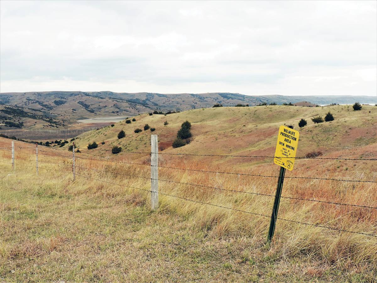 The hunt took place on two state game production areas as well as a cattle ranch.