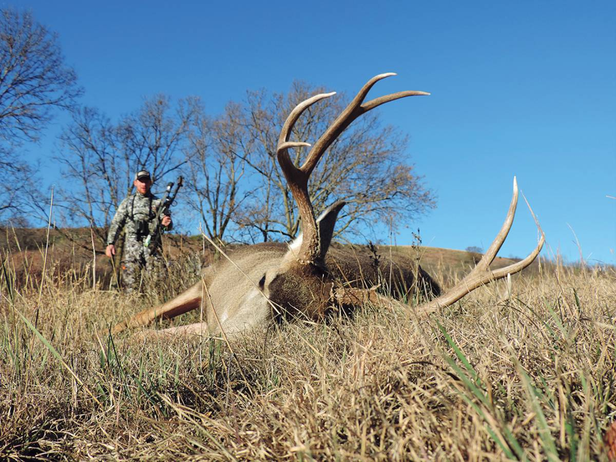 Darron's beautiful South Dakota mule deer fell to a double-lung hit.